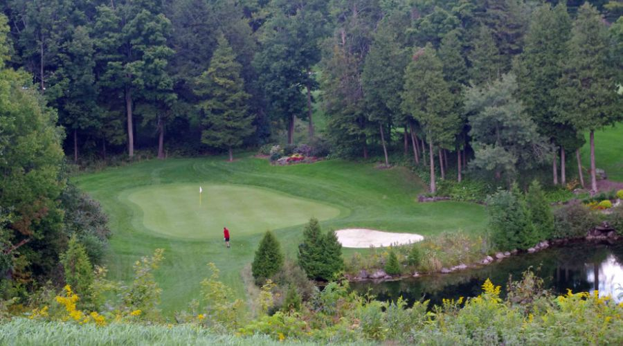 Blue Springs No. 17, Par 3, 169 yards