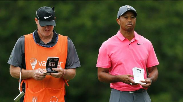 Shag Bag: Tiger sued, crazy swings and staying sharp with the dogs